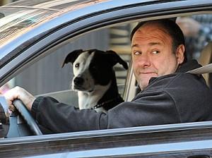 Oι σκύλοι όλου του κόσμου έχασαν έναν φίλο...