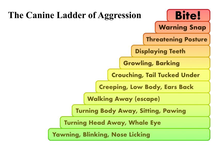 do aggression